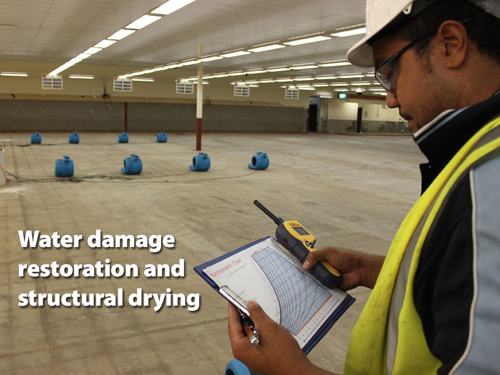 Water damage restoration and structural drying